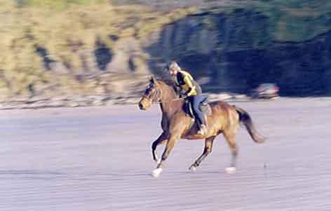 Horse riding on the coast.
