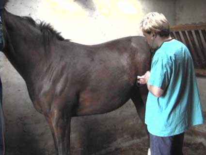 Examination of the abdomen in the colic patient.